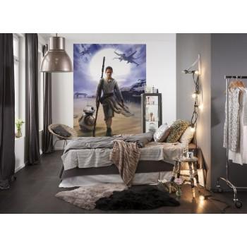 Fototapeta Star Wars Rej Komar 4-448 (184 x 254 cm) - Sklep z Fototapetami Tapetydekoracje.pl