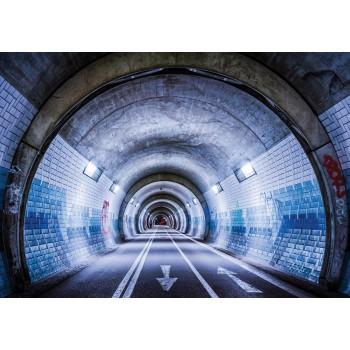 Fototapeta  12624 P4  Tunel (254 x 184 cm) - Sklep z Fototapetami Tapetydekoracje.pl