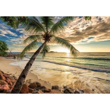 Fototapeta  11732 P4  Wschód słońca na plaży (254 x 184 cm) - Sklep z Fototapetami Tapetydekoracje.pl