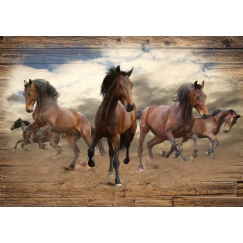 Fototapeta  10083 P4  Konie (254 x 184 cm) - Sklep z Fototapetami Tapetydekoracje.pl