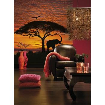 Fototapeta Komar 4-501 African Sunset (194 x 270 cm) - Sklep z Fototapetami Tapetydekoracje.pl