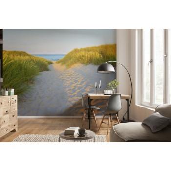 Fototapeta Droga Piaszczysta Komar 8-995 Sandy Path (368 x 254 cm) - Sklep z Fototapetami na ścianęTapetydekoracje.pl