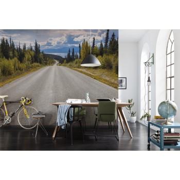 Fototapeta Droga w Kanadzie Komar 8-532 Atlin Road (368 x 254 cm) - Sklep z Fototapetami na ścianęTapetydekoracje.pl