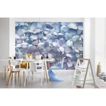 Fototapeta Komar 8-961 Light Blue (368 x 254 cm) - Sklep z Fototapetami Tapetydekoracje.pl