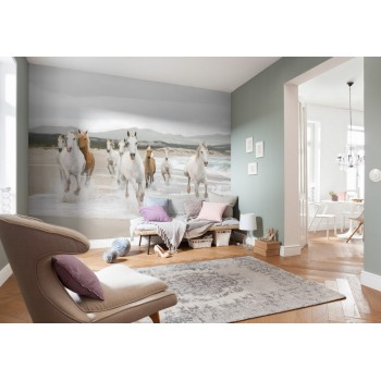 Fototapeta Komar 8-986 White Horses (368 x 254 cm) - Sklep z Fototapetami na ścianęTapetydekoracje.pl